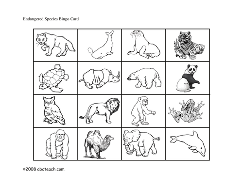 Bingo Cards: Endangered Animals (primary/elem)