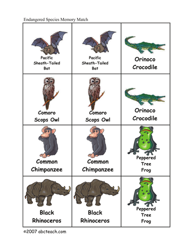 Memory Game: Endangered Animals (elem/upper elem)