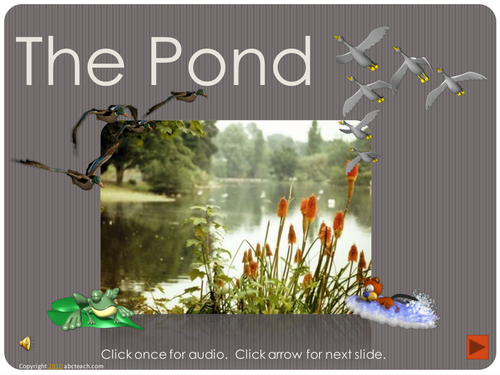PowerPoint: Presentation with Audio: The Pond (primary)