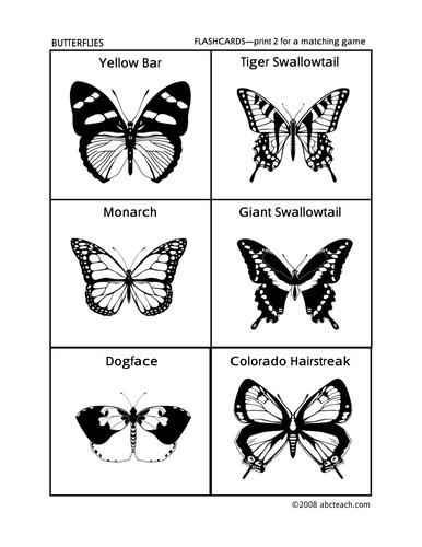 Flashcards: Butterflies (preschool/primary)