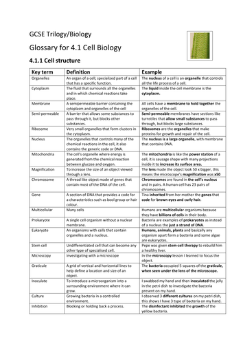 Cell structure and division by mitosis AQA Biology 4.1.1&4.1.2 Glossary. Literacy impact.