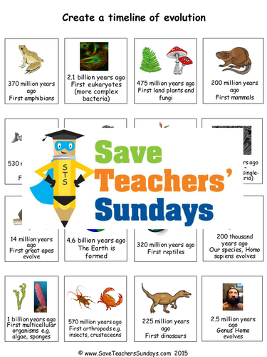 Evolution timeline ks2 lesson plan and worksheet by evolution timeline ks2 lesson plan and worksheet by saveteacherssundays teaching resources tes ibookread