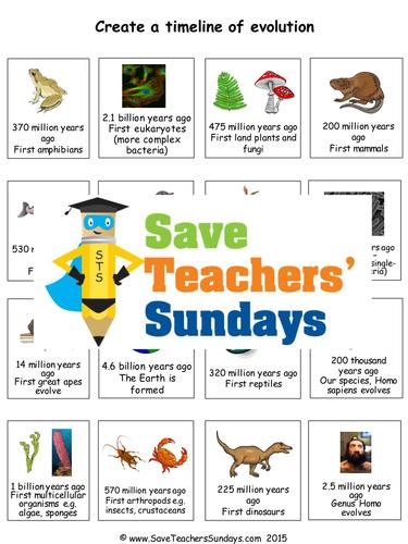 Evolution Timeline KS2 Lesson Plan and Worksheet