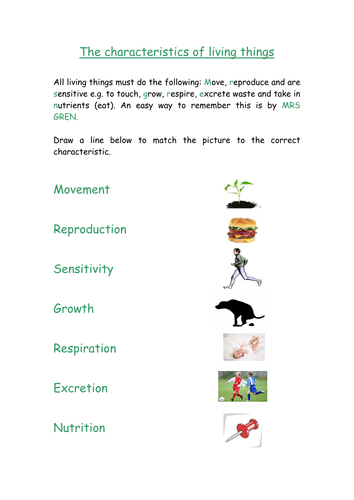 Biology Y7 worksheet - Characteristics of living things and cells