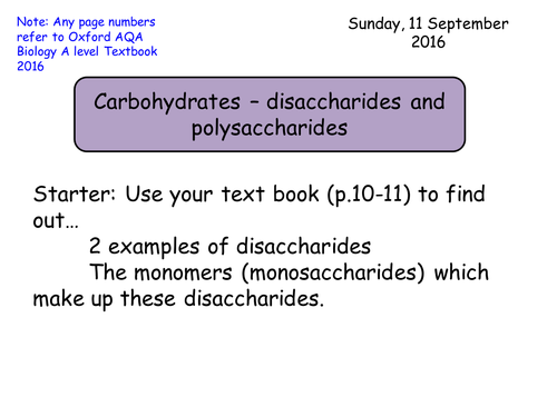 Section 1 Biological Molecules 13 Carbohydrates Disaccharides
