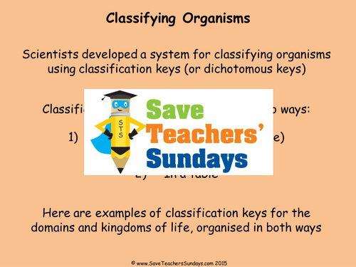 Classification Keys Ks2 Lesson Plan Powerpoint And Worksheet By
