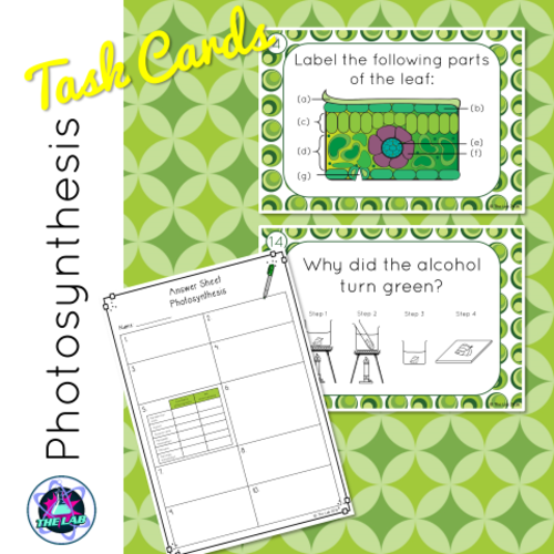 Photosynthesis Task Cards | Teaching Resources