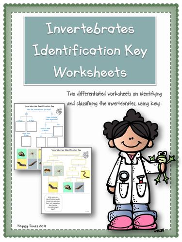 Invertebrate Animals Classification Identification Key