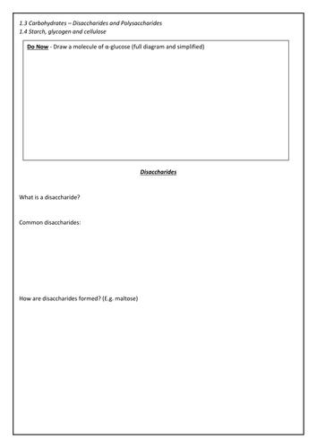 Disaccharides and Polysaccharides