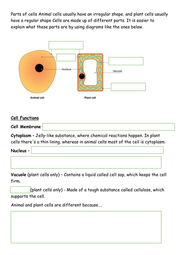 Animal and plant cells resources