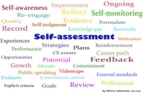 Self/Peer Assessment Checklists