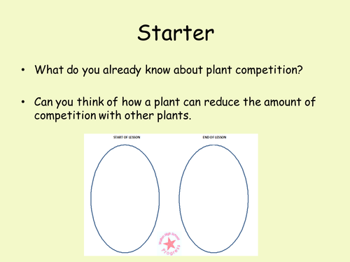 Plant Competition (with HSW)