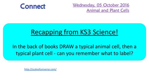 KS4 AQA New spec 2016 B1 Plant and animal cells