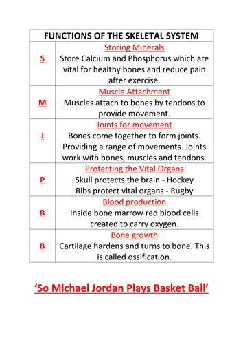 Functions of the skeletal system - New GCSE edexcel by Halif28 ...