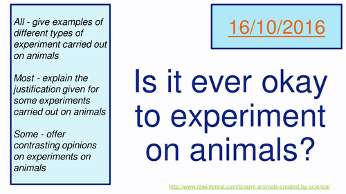 Is it ever okay to experiment on animals?