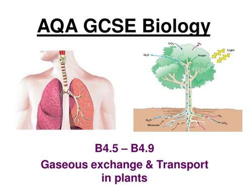 New AQA GCSE Biology B4.5 to 4.9 (Separates)