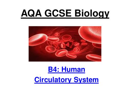 New AQA GCSE Biology B4.1 to 4.4 Circulatory System (Separates)