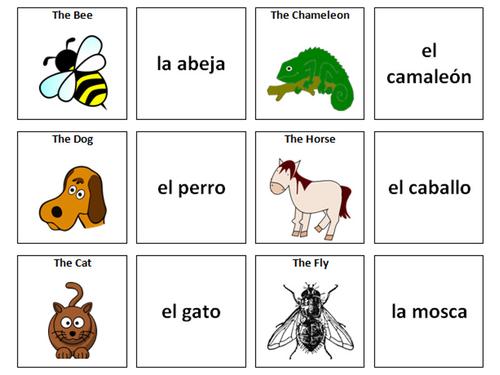 Spanish Vocabulary Card Sorts