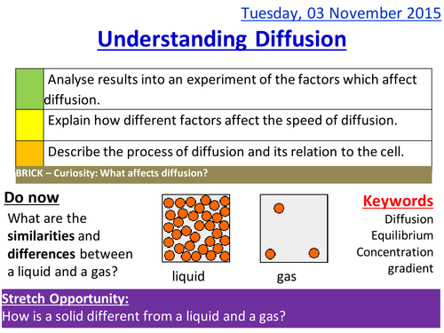 describe the difference between the rate of diffusion seen for sodium and urea