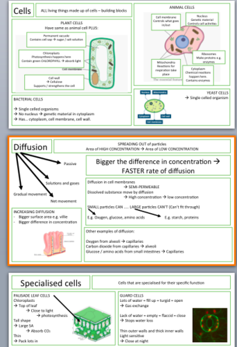 Additional Science Revision notes: B2, C2, P2