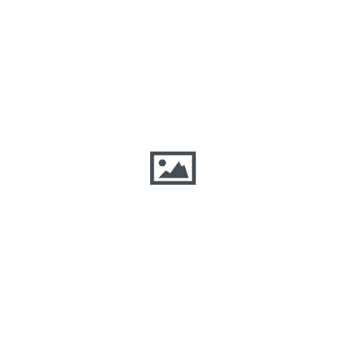 The Animal Boogie story resource pack- Jungle animals
