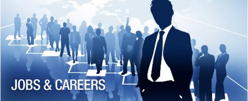 Careers/World of Work/Finance BUNDLE