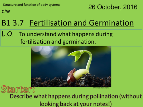 Activate 1: B1:  Fertilisation and Germination