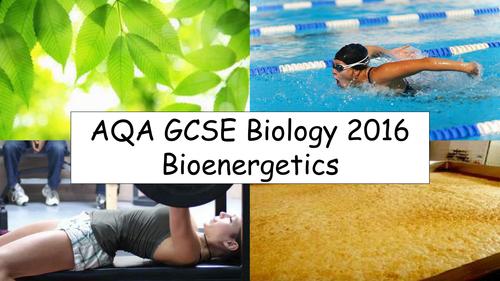 AQA GCSE Biology (New for 2016) - Bioenergetics