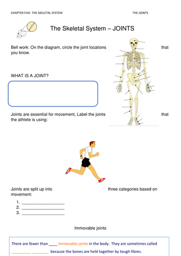 Synovial Joints Worksheet By Davidharmer Teaching Resources Tes