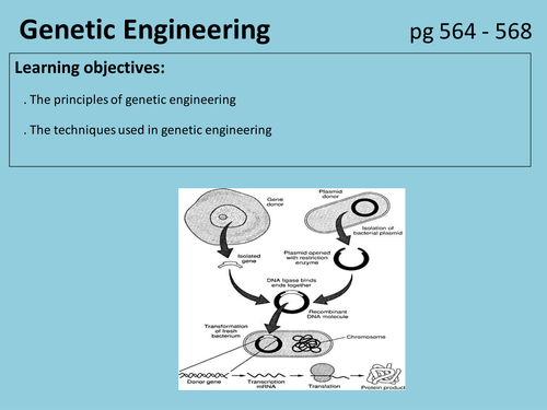 Genetic engineering A2 New OCR spec lesson