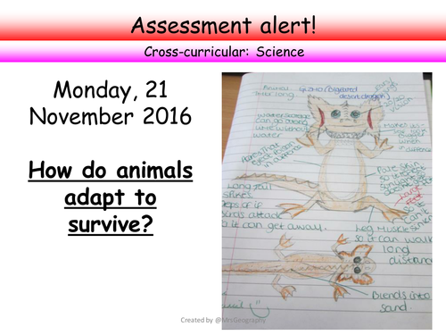 Ecosystem assessment - How do animals adapt to survive