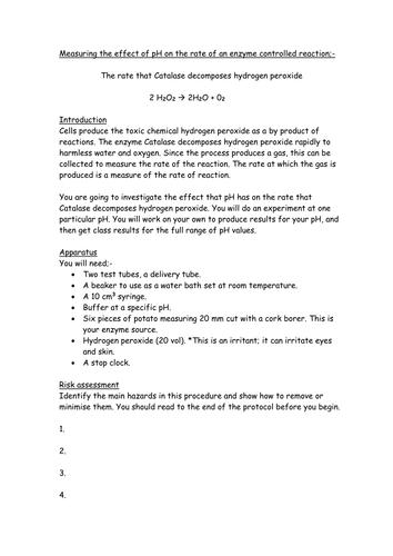 catalase effect on hydrogen peroxide
