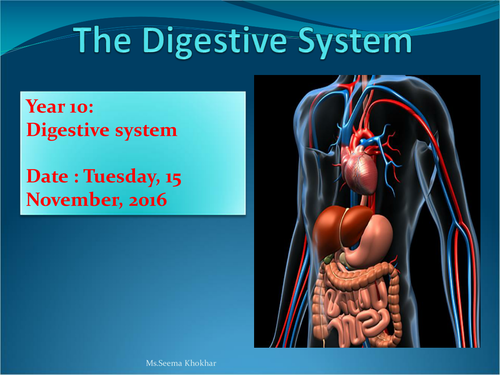 Digestive system with worksheet and ppt and past paper questions digestive system with worksheet and ppt and past paper questions by seemakhokher teaching resources tes toneelgroepblik Images