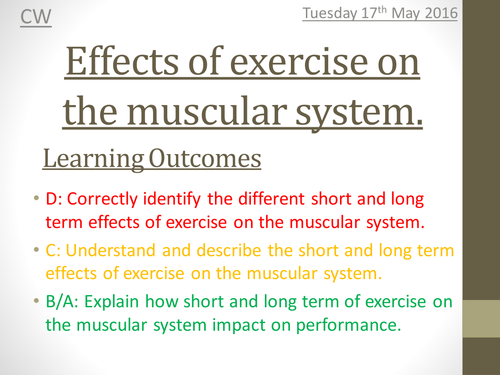 Ocr 1 9 Gcse Pe Muscular System Unit Of Work Scheme Of Learning By