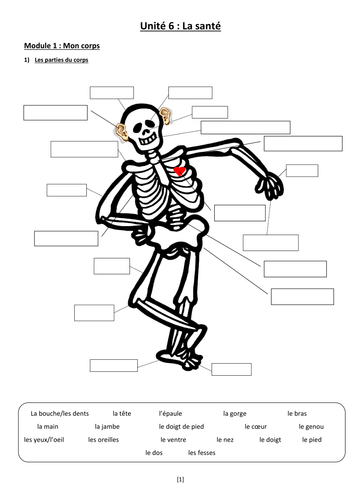 Health - (I)GCSE Extended booklet