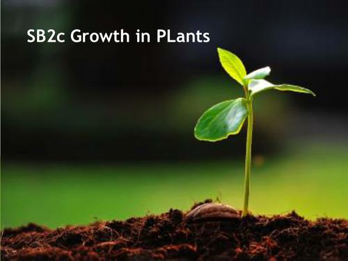 Edexcel 9-1 SB2c - plant growth