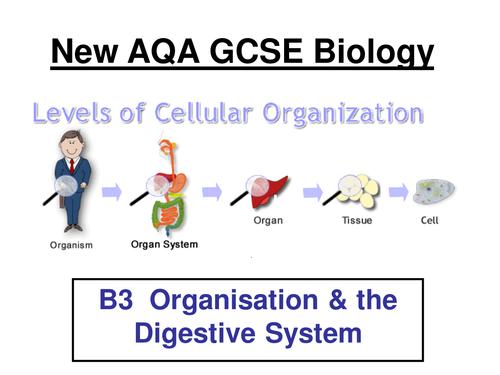 New AQA B3 Biology Separates 2017