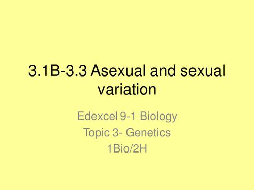 GCSE New Spec EDEXCEL 9-1 Year 10 Topic 3