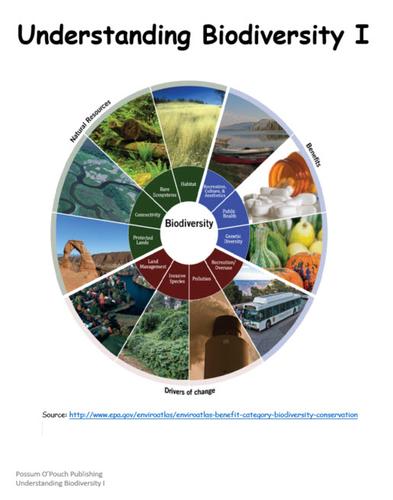 Understanding Biodiversity I and II