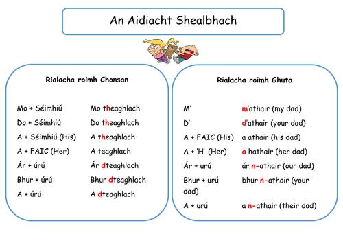 An Aidiacht Shealbhach Revision Mat