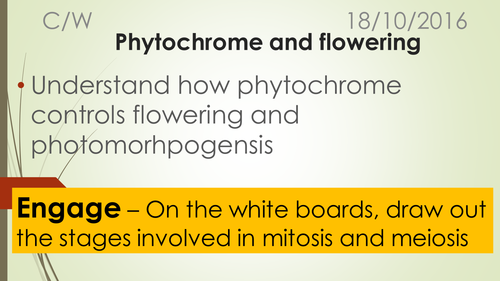 A-Level Biology B Edexcel – Topic  Phytochrome and Flowering