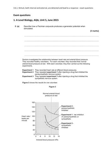 NEW A Level Bio AQA 3.6.1 Survival & response, receptors, control of heart rate exam questions & MS