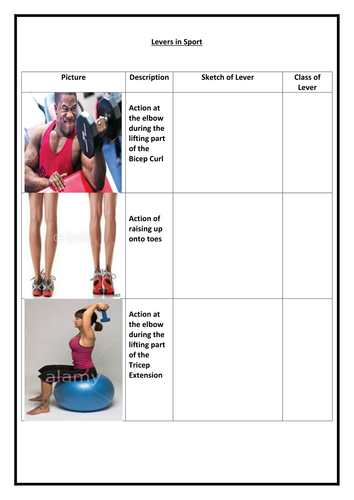 Levers In The Body By Jonnymac20 Teaching Resources Tes