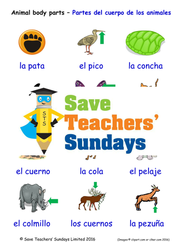 Animal Body Parts in Spanish Worksheets, Games, Activities and Flash Cards  (with audio)