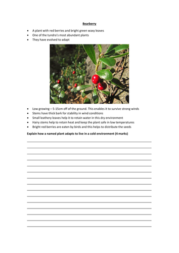 New AQA GCSE The Living World- Cold Environments Lesson #1