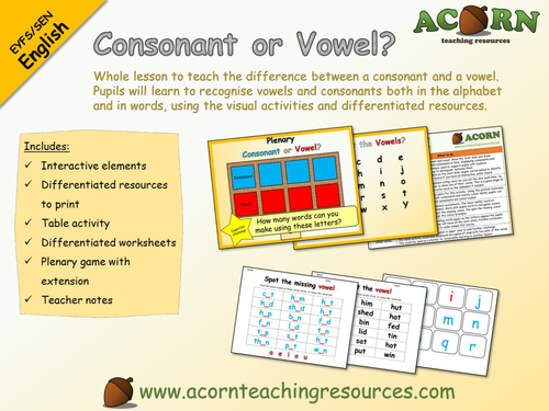 Whole lesson - EYFS/SEN English - Consonant or Vowel?