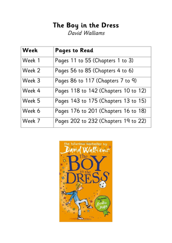 The Boy in the Dress by David Walliams - Unit of Work