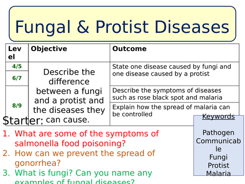 NEW AQA Biology lesson Fungal Protist Diseases by SWiftScience – Protists Worksheet