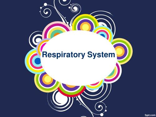 Edexcel GCSE P.E 9-1 - Respiratory system/gas exchange/tidal volume/vital capacity