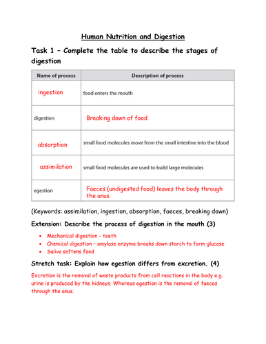GCSE Biology - Human Nutrition and Digestion Worksheet (with ...